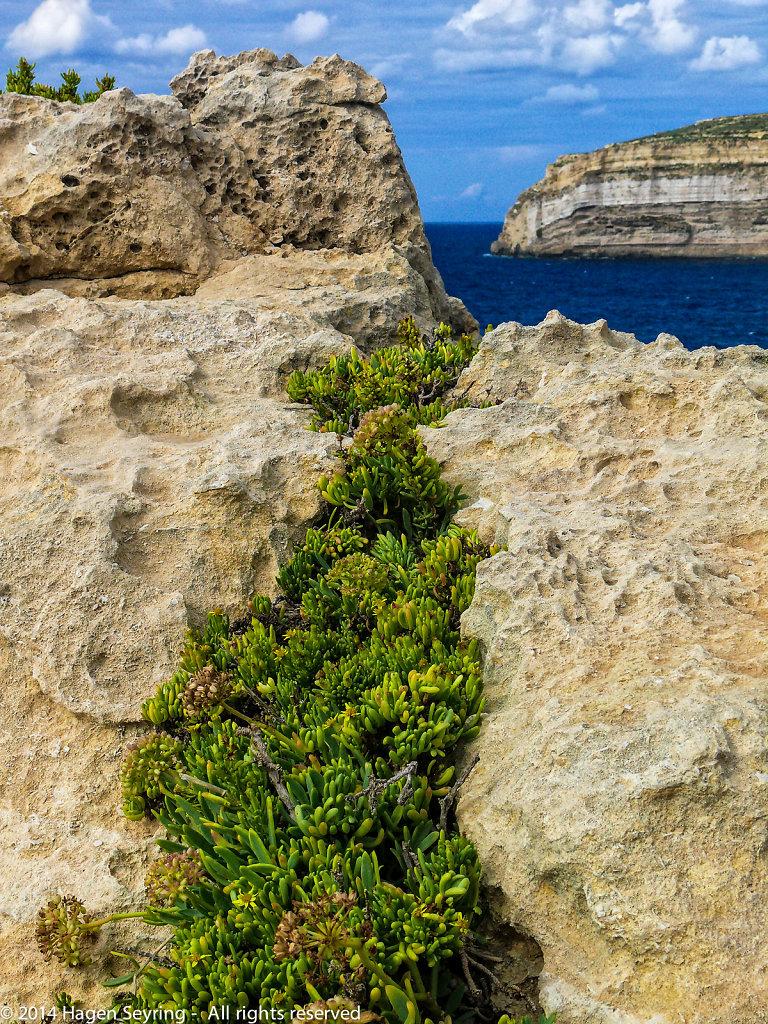Rocks formation on Gozo