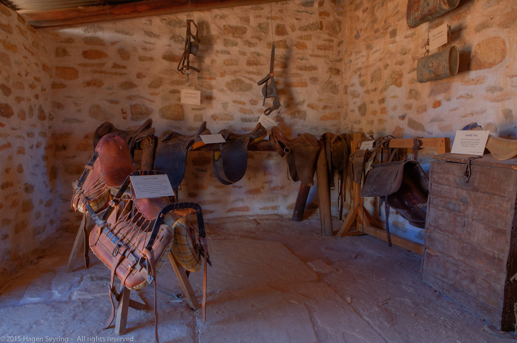 Inside the camel stables